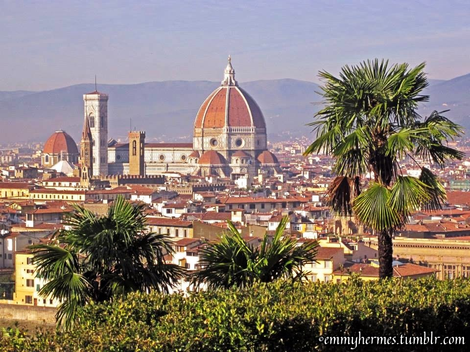 Florence - city view